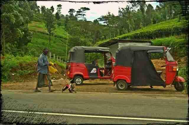 los contrastes de Sri Lanka