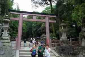 subiendo al templo Kasuga-taisha