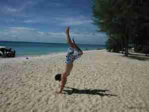 kike haciendo de las suyas en Bamboo island