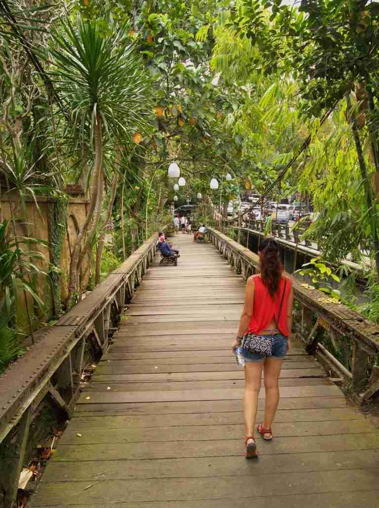 de camino a Ubud por puentes mágicos