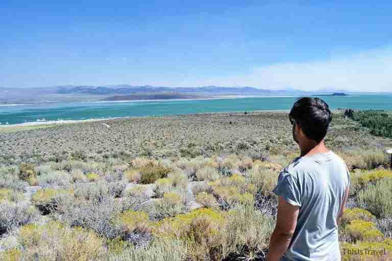 Vistas del Mono Lake