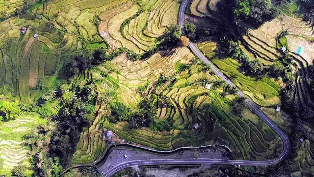 panoramica dron de arrozales de Bali, Indonesia